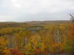 mn fall panorama leaves turned